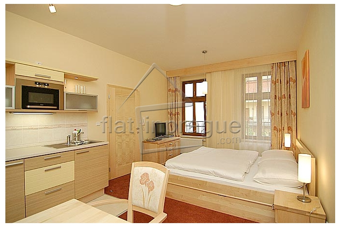 Fully furnished modern studio in a renovated building