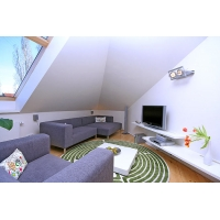 Luxurious, sunny attic apartment near the Prague  Castle