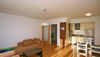 Beautiful, modern furnished one bedroom apartment with terrace, close to the cit