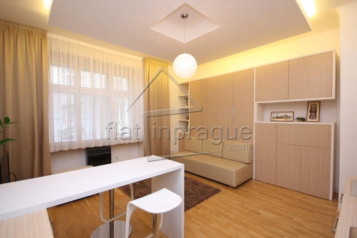Recently renovated studio in a quiet part of Prague