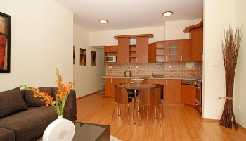 Brand new nice and cozy one bedroom apartment in great location of Prague 1