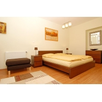 Brand new nice and cozy one bedroom apartment in great location of Prague 1  Opatovická