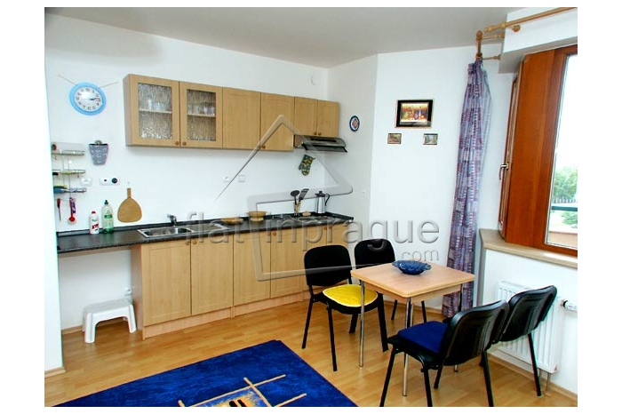 Nice furnished studio in Prague 6