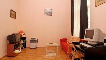 Beautiful furnished family apartment in area Letná