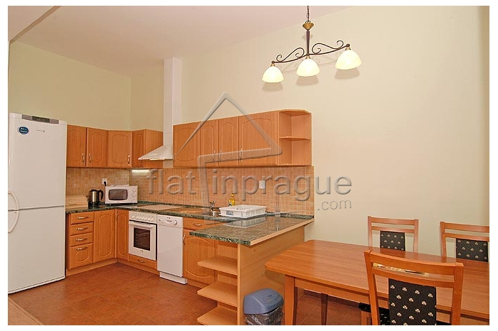 Luxurious apartment at famous Vinohrady