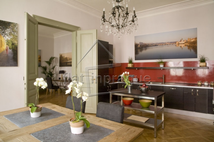 Unique and luxurious apartment in Prague 2