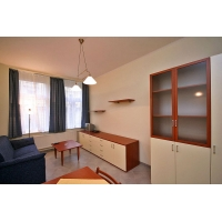 Beautiful, luxurious, fully furnished apartment 2+kk in a newly  renovated build