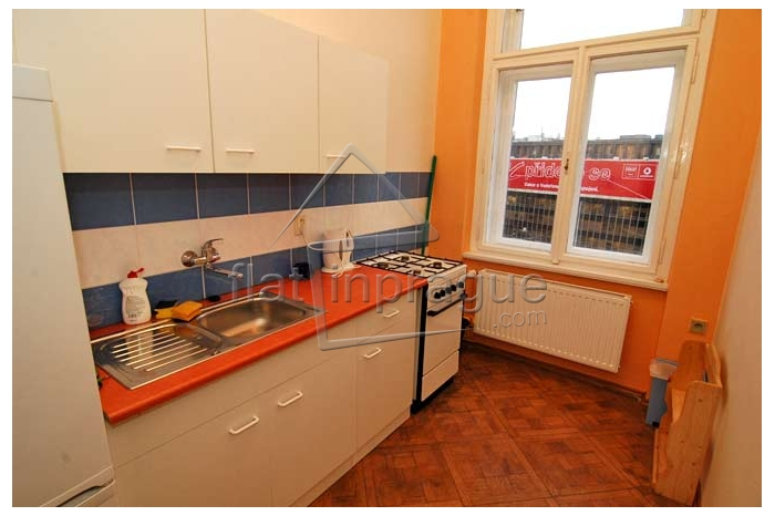 Sunny and spacious apartment with fireplace close to Wenceslas Square