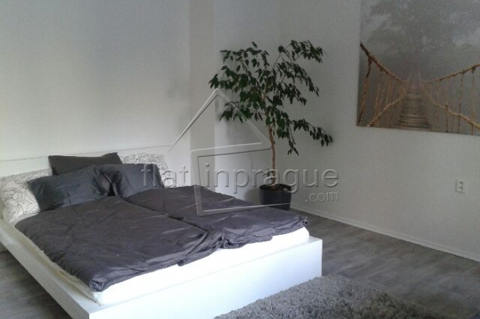 Design apartment with a great connection to the city centre