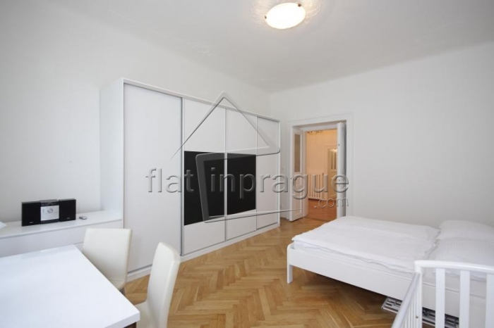 Luxurious apartment in the city centre