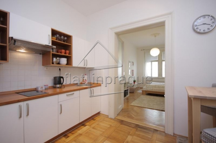 Beautiful apartment in the city centre