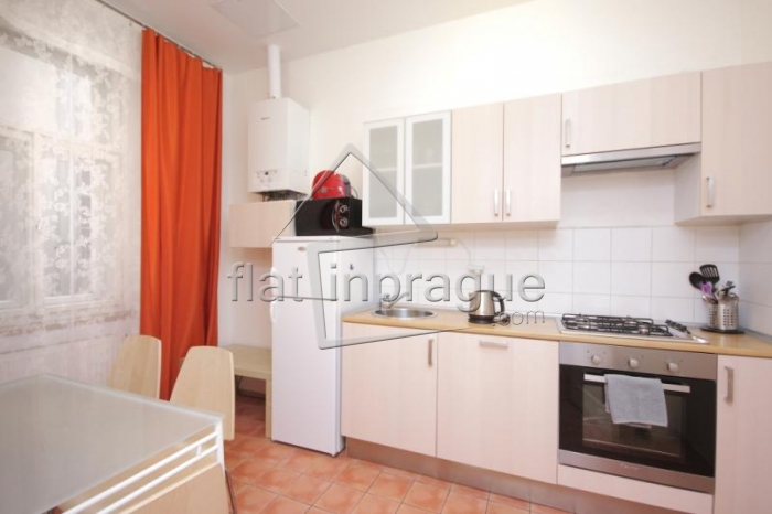 Bright comfortable apartment in New Town
