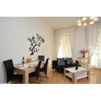 Beautiful and bright studio in the center of Prague
