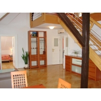 Luxury apartment with air conditioning and garden in a villa in Prague 2