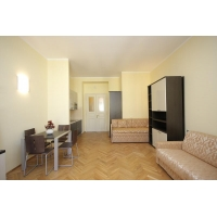 We are offering beautiful studio in Italian style right in the center of Prague