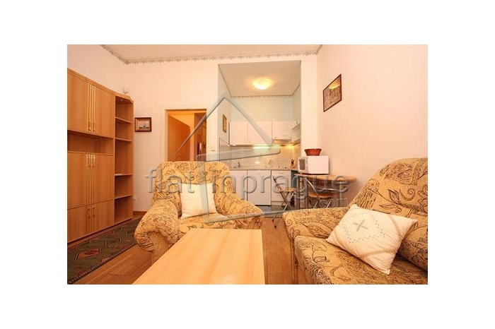 Comfortable fully furnished apartment in Prague 2 Vinohrady