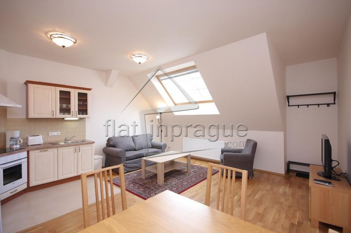 Beautiful modern attic apartment in Prague 2 Vinohrady