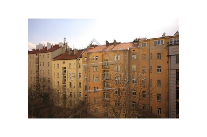 Beautiful sunny apartment in Prague 2 Vinohrady