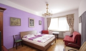Spacious apartment in the center of the Pragues most beautiful part - Old Town  Revoluční