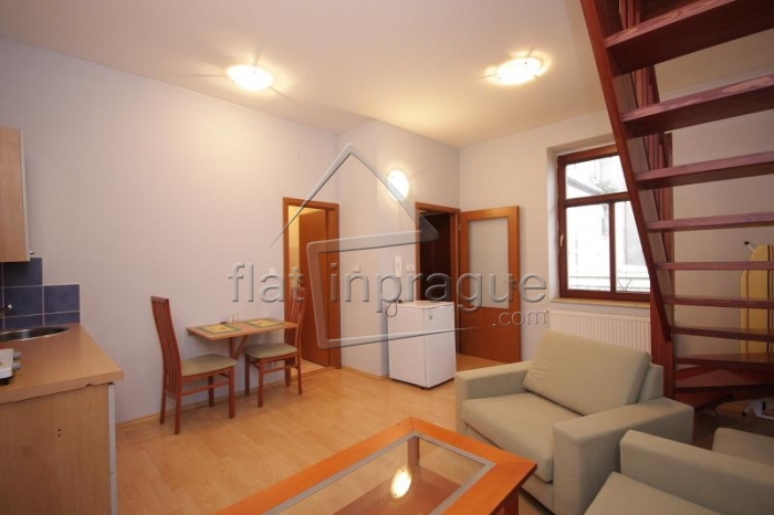 Beautiful atypical one bedroom apartment
