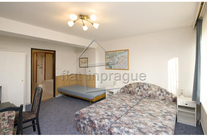 Nice and fully equipped studio with garden