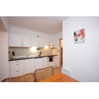 Nice, furnished one bedroom apartment, street Heleny Malířové-Prague 6