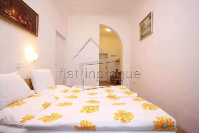 Sunny and nice fully furnished studio apartment