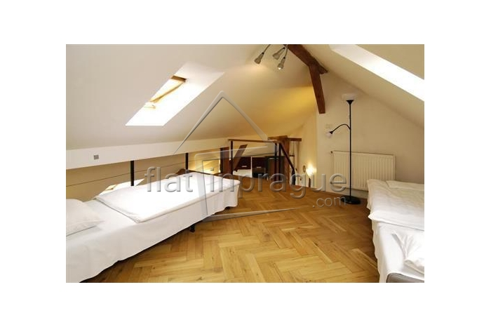 Beautiful one bedroom apartment for rent in Prague 2 - New Town