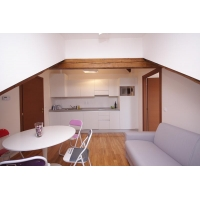 Modern two-bedroom apartment for short or long term rent in wonderful Vysehrad a