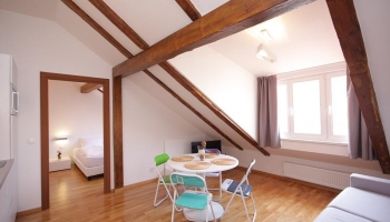 Modern one bedroom attic apartment for short or long term rent