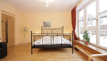 Beautiful spacious apartment for max.12 people in the centre of Prague