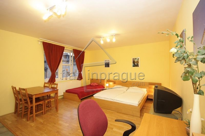 Beautiful bright apartment in the heart of Prague