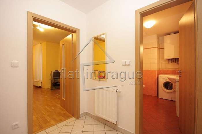 Beautiful, bright apartment in the heart of Prague