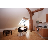 Comfortable attic studio apartment for rent in Prague 2 - New Town