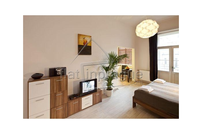 Modern bright apartment in the very city centre
