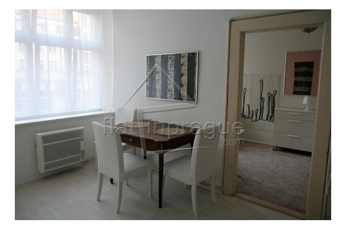 Cosy refurbished apartment at demanded Vinohrady