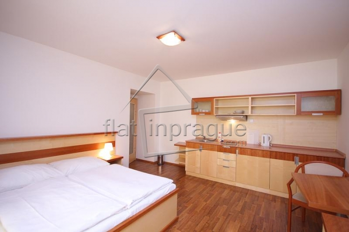 Very cosy studio in the business centre of Prague