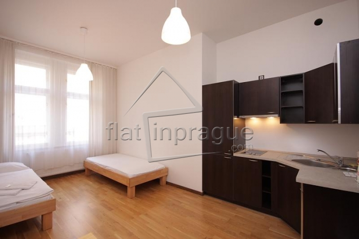 Very nicely refurbished apartment at Smichov district
