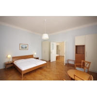 Beautiful sunny apartment in the attractive area of ​​Prague - Vinohrady (2nd fl