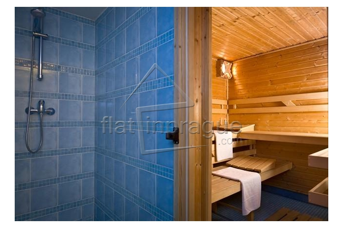 Apartment with sauna and gym access