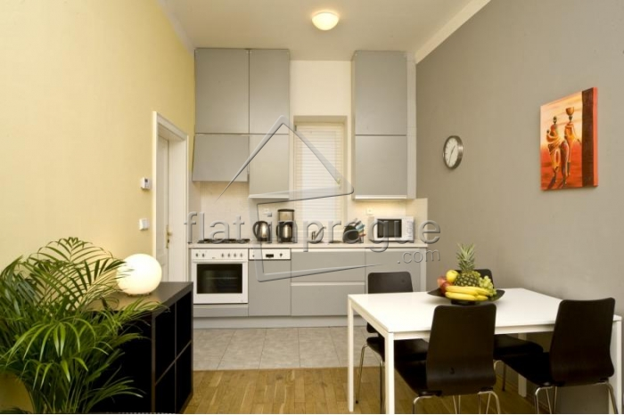 Luxury, spacious one bedroom apartment on Wenceslas square