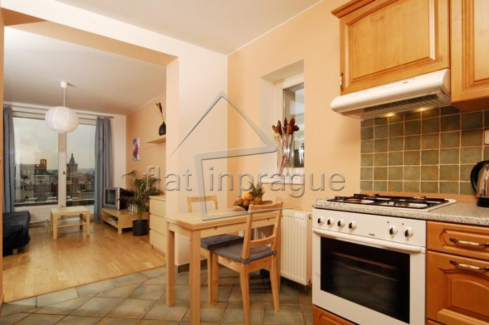 Sunny and bright apartment with terrace on Wenceslas Square