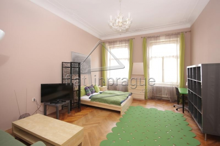 Beautiful romantic apartment in the heart of Prague - 2nd floor