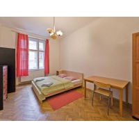 Spacious apartment in the historical centre of Prague
