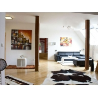 Original duplex apartment in a historical center of Prague
