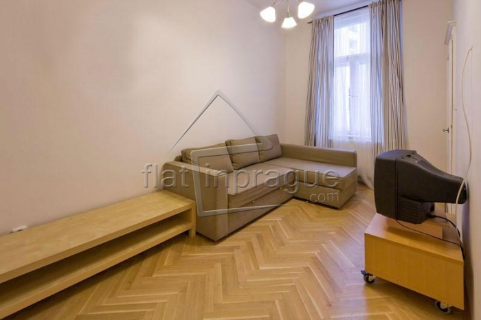 Elegant air-conditioned apartment in the historical centre of Prague