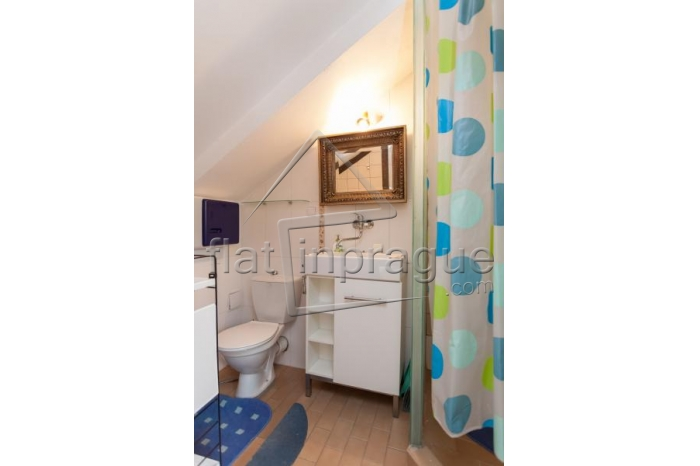 Comfortable studio with a large terrace in Prague 2 - Vinohrady