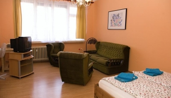 Comfortable apartment in Prague 7 - Holešovice (2nd floor)