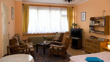 Comfortable apartment in Prague 7 - Holešovice (1st floor)