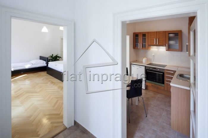 Beautiful, bright one bedroom apartment with terrace in the heart of Prague